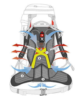 X1 systém W