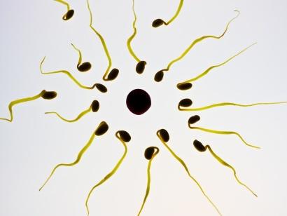 Testosteron potřebný pro svalovou hmotu a chuť na sex