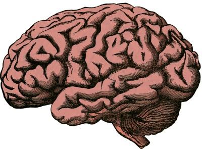 Modafinil, kofeínové tabletky, nootropiká, pamäť, mozog