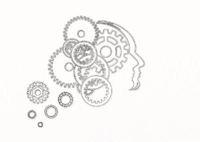Účinky lieku Concerta na mozog a kognitívne schopnosti