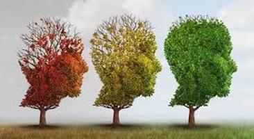karnozin alzheimer