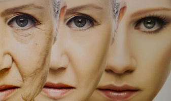 karnozin starnutie