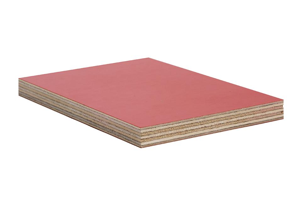 Preglejka foliovana breza červena